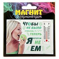 """Магнит с термометром """"Чтобы не было проблем"""", 9,5*7см, бумага/пластик"""