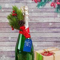 """Новогоднее украшение на бутылку """"Счастья в Новом Году"""", h-19см, пластик"""