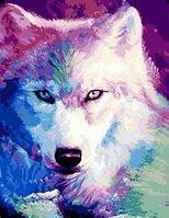"""Картина по номерам """"Красивый волк"""" 40х50 см"""