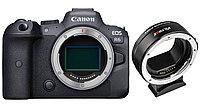 Цифровой фотоаппарат Canon EOS R6 Body + Adapter VILTROX EF-EOS R (гарантия 2 года + страховка)