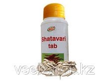 Шатавари, Шри Ганга / Shatavari, Shri Ganga, 120 таблеток