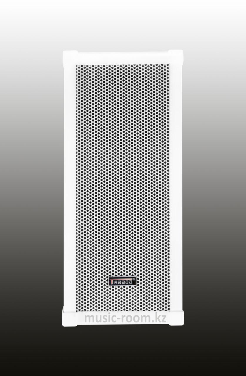 Уличная всепогодная акустическая система Tarboc ZH-3030 30 ватт