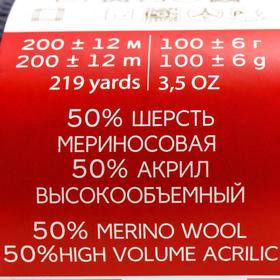 Пряжа 'Мериносовая' 50меринос.шерсть, 50 акрил 200м/100гр (393-Св.моренго) - фото 4