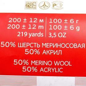 Пряжа 'Мериносовая' 50меринос.шерсть, 50 акрил 200м/100гр (98-Лесной колокольч.) - фото 4