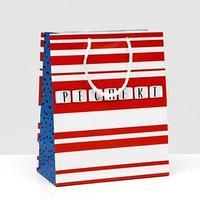 Пакет подарочный 'Респект', 18 х 22,3 х 10 см (комплект из 6 шт.)