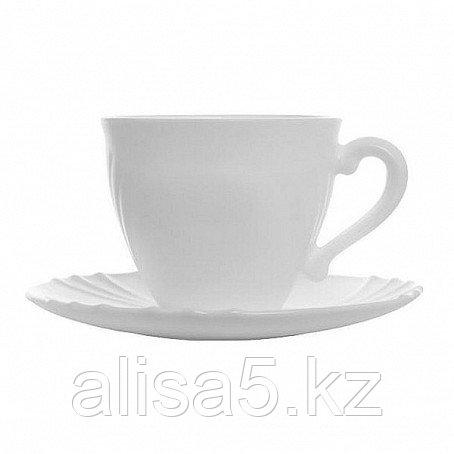 OG SHELL чайный сервиз на 6 персон из 12 предметов (160 мл), шт