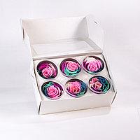 Роза Large - мультиколор (multicolors)