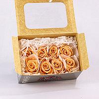 Роза Медиа (персиковый); 8 бутонов