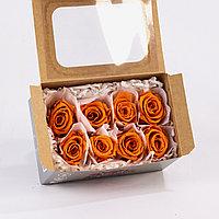 Роза Медиа (оранжевый)