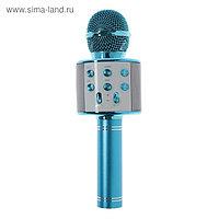 УЦЕНКА Микрофон для караоке Belsis MA3001BE, Bluetooth, FM, microSD, синий