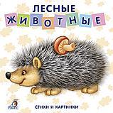 Книжки - картонки. Лесные животные, фото 2