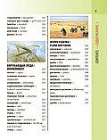 Англо-русский визуальный словарь с транскрипцией, фото 9
