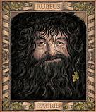 Роулинг Дж. К.: Гарри Поттер и Тайная комната (с цветными иллюстрациями), фото 6
