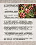 Стивенсон Т.: Большая книга кофе (Чашка на темном фоне), фото 9