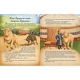Қазақ ертегілерінің антологиясы: Жан-жануарлар әлемі, фото 4