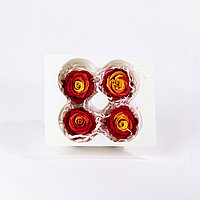 Роза bicolors Мини (красный/желтый); 4 бутона
