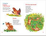 Кушак Ю. Н.: Простые стихи для заучивания, фото 6