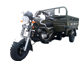 Трицикл - грузовой BATYR 250 (Муравей)