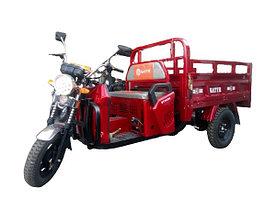 Трицикл - грузовой BATYR 125 (Муравей)