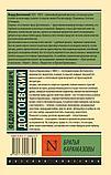 Достоевский Ф. М.: Братья Карамазовы, фото 3
