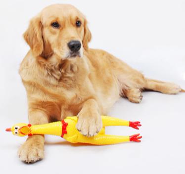 """Кричащая курица """"игрушка антистресс"""" 43 см - фото 1"""