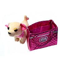 Собачка в сумочке Chi Chi Love (Чичилав) - чихуахуа с цветным ошейником, розовая сумка