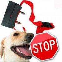 Ошейник для дрессировки собак