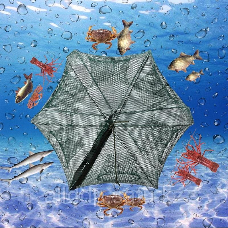 Рыболовная сеть-ловушка Fish Hunter - фото 1