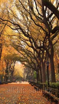 Гибкий настенный обогреватель Jarkoff - Осень - фото 1