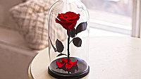 Вечная роза в колбе, красный