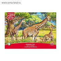 Альбом для рисования А4, 40 листов на клею ArtBerry «Саванна», обложка мелованный картон 170 г/м2, блок 120