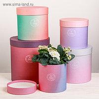 Набор круглых подарочных коробок 5 в 1 «Пантон 08», 23 × 23 × 25 15 × 15 × 15 см