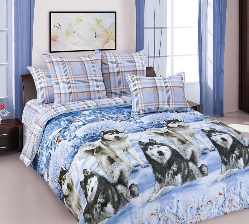 ТексДизайн Комплект постельного белья Хаски 1, 1.5 спальный , бязь