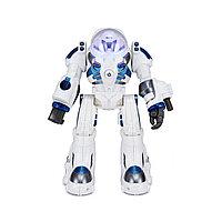 Радиоуправляемый Робот RASTAR 76900W