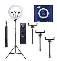 Кольцевая лампа LED Light YQ-460B со штативом до 2 м 46 см