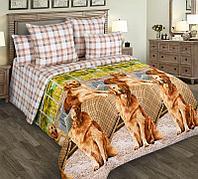 ТексДизайн Комплект постельного белья Рич 1, 1.5 спальный , бязь