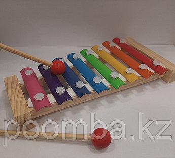 Развивающая игрушка Ксилофон маленький 0846