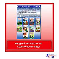 """Плакат """"Вводный инструктаж по безопасности труда"""""""