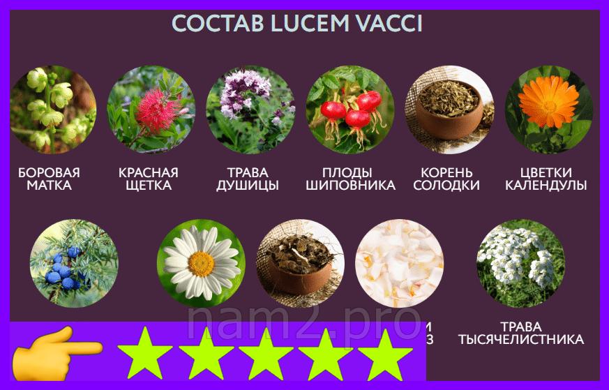 Lucem Vacci - свечи для женского здоровья, экстра сила - фото 5