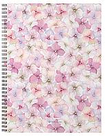 Тетрадь общая с пластиковой обложкой на спирали Phloxes, А4, 60 листов, клетка