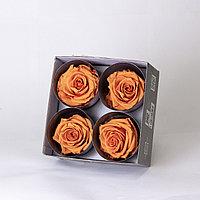 Роза Премиум (оранжевый); 4 бутона