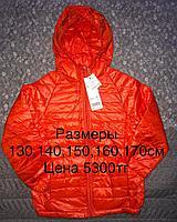 Куртка для девочек, размеры 130,140,150,160,170см, осень /весна