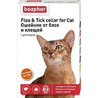 Ошейник от блох БЕАФАР для кошек оранжевый