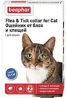 Ошейник от блох БЕАФАР для кошек синий