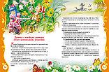 Толстой А. Н.: Золотой ключик, фото 3