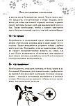 Милн Э., Вилд К.: Научись думать как собака. 501 совет по уходу и воспитанию, фото 10