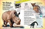 Бедуайер К.: Животные. Энциклопедия удивительных фактов, фото 3