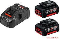 Базовый комплект 2 GBA 18V 5.0Ah + GAL 1880 CV Professional 1600A00B8J