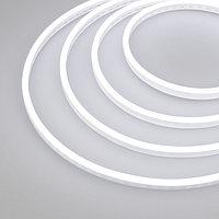 Гибкий неон GALAXY-1206-5000CFS-2835-100 12V White (12x6mm, 12W, IP67) (arlight, 12 Вт/м, IP67)
