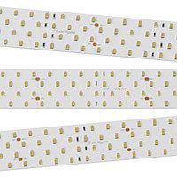 Светодиодная лента RT 2-2500 24V White6000 4x2 (2835, 700 LED, LUX) (arlight, 30 Вт/м, IP20)